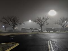 A Foggy Evening (jolynne_martinez) Tags: kansascity mo unitedstatesofamerica fog foggy mist misty night evening dark darkness light lights parkinglot tree trees car cars googlepixel