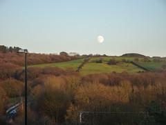 Moon over Rivington Moor, 2019 Dec 09 (Dunnock_D) Tags: britain chorley england gb lancashire rivington uk unitedkingdom blue grass green moon moor sky trees