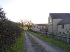 Lane in Chorley, 2019 Dec 09 (Dunnock_D) Tags: britain chorley england gb lancashire uk unitedkingdom blue grass green hedge house houses path sky