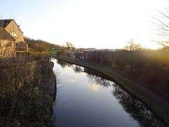 Sun over a canal, Chorley, 2019 Dec 09 (Dunnock_D) Tags: britain chorley england gb lancashire uk unitedkingdom blue bushes canal grass green house sky water