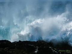 P1020644.jpg (c.gleim) Tags: wellen natur meer
