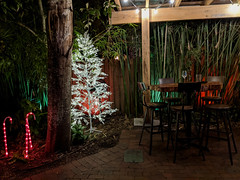 Christmas at the Third Wave (Lake Effect) Tags: 3rdwave thirdwave restaurant newsmyrnabeach florida flaglerave 100daysofdarkness 28100 christmastree bamboo table chair