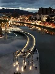 Bilbao (Daniela Iaconis) Tags: viajes urbanlandscape reflejos arquitectura paisajeurbano iphone españa louisebourgeois luces turismo paísvasco bilbao noche rio gente araña museo guggenheim