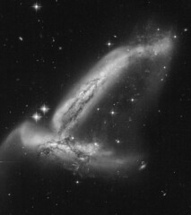 Arp 278 (geckzilla) Tags: galaxy galaxies dust stars hst interacting merging merger interaction