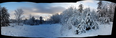 Ice storm pano : Autostitch (chasdobie) Tags: pano panorama autostitch winter icestorm outdoor snow rural sky lanarkcounty ontario canada