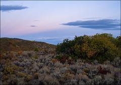 (bpark_42) Tags: sony a7r4 autumn fall colorado landscape zeiss loxia 50mm 502 bluehour