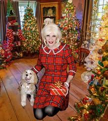 DSC00223CKF Happy Christmas!  Season's greetings! (msdaphnethos) Tags: mallory daphnethomas blonde crossdress transgender christmas
