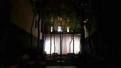 تو مبین که بر درختی یا به چاه/ تو مرا بین که منم مفتاح راه (zeinabotalebi) Tags: shadow treeshadows waterfall reflection sparklingshadows nyc newyorkcity manhattan midtown lights lightshadows windows pattern