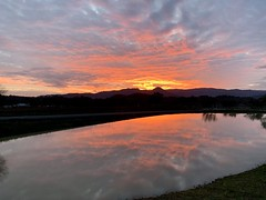 Wine Country (hsujack00) Tags: wine country hopland california sunset pond vineyard reflection sky clouds