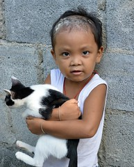 boy with talcum powder in his hair and a struggling cat (the foreign photographer - ฝรั่งถ่) Tags: boy child cat talcum powder hair khlong thanon portraits bangkhen bangkok thailand nikon d3200