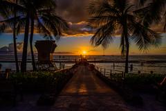 Waikiki Sunset (Martin Smith - Having the Time of my Life) Tags: waikikisunsetsunset waikiki hawaii martinsmith ©martinsmith palmtrees ocean lifeguardstation dramaticclouds honolulu kūhiōbeach silhouette sunset z50