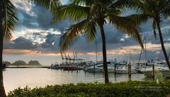 The serene reflections. (Aglez the city guy ☺) Tags: miamibeachmarina walking walkingaround waterways seashore sailboat yacht urbanexploration sportsport outdoors coconuttree sobe miamibeach