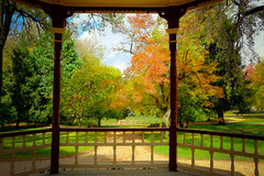 From the Rotunda (Erich Schieber) Tags: architecture park autumn fall australia rotunda cookpark