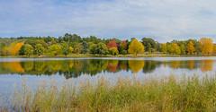 Autumn Panorama Lake Canobolas (Erich Schieber) Tags: australia panorama autumn fall botany tree water dam lake lakecanobolas landscape reflection