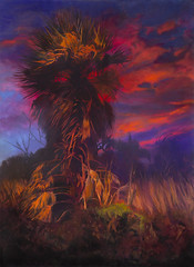 RED PALM (paulosabado) Tags: maui hawaii oilpainting kealiapond palmtree dawn