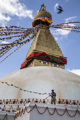 "Boudhanath Stupa. Kathmandu, Nepal (Ann Kruetzkamp) Tags: ""adventureconsultants"" nepali nepal kathmandu october 2019 adventure travel canon ""d5markiii"" ""canonphotography"" ""adventurephotography"" ""travelphotography"" autumn markets market ""boudhanathstupa"" boudhanath stupa buddha buddhist buddhism holy religion prayerflags marigolds"