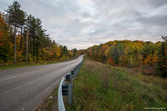 Down the Road  Again (annedphotography1) Tags: trees fall road fence sky nature outdoors outdoorsphotography