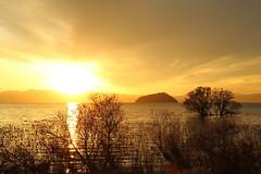 Sunset (Teruhide Tomori) Tags: lakebiwa shiga kohoku landscape winter lake japan japon water afternoon evening nature 琵琶湖 湖北 日本 関西 滋賀県 自然 風景 夕景 sky sunset tree