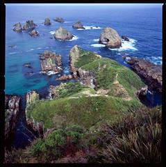 New Zealand-34 (Brandon_Smith) Tags: film hasselblad553elx fujivelvia100 mediumformat seascape newzealand