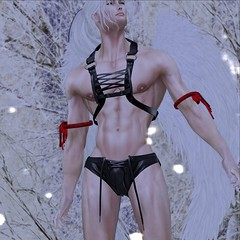 MR SL ♛ Russia 2020 - Victor Secret Challenge - 12/14/19 (Darien FaNg) Tags: victor secret bows armbands wings feathers mrsl2020 msslorganization pageant runway catwalk competition model models modeling laceupharness