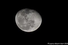 20191214December Moon34460 (Laurie2123) Tags: 52weeksof2019 laurieabbotthartphotography laurieturner laurieturnerphotography laurie2123 nikkor80400mm nikond800 moon