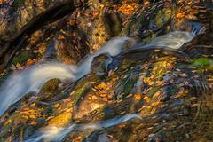 Flow (mclcbooks) Tags: fall autumn leaves waterfall water longexposure le