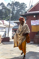 "Shree Pashupatinath Temple. Kathmandu, Nepal (Ann Kruetzkamp) Tags: sadhus sadhu shiva saddhu jogi sannyasi vairagi kruetzkamp ann annkruetzkamp documentary photography photojournalism markets ""adventureconsultants"" nepali nepal kathmandu october 2019 adventure travel canon ""d5markiii"" ""canonphotography"" ""adventurephotography"" ""travelphotography"" autumn market"
