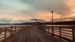 #streetphotography #streetshots #boardwalk #Water #sunrise #Sky #clouds #SalmonArm #wood #walkway #beautiful (Alex A Frost) Tags: streetphotography streetshots boardwalk water sunrise sky clouds salmonarm wood walkway beautiful