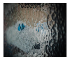 ICH schaue durch ein Fenster - I'm looking through a window (WolfiWolf-presents-WolfiWolf) Tags: wolfiwolf wolf wolfismus portrait fenster mäinfenster könntihrmichsehen butler fuddlers eneamaemü eneaisch blau blaueaugen augen quantenuniversum glas schnauzerl mäinefarben havigmacht lupus huldvoll zen universum universe unendlichkeit ich ichträumegernvonkleinenwolfis jazzinbaggies joy huldigung hungary impisi poem pantoffln pelz party öhrchen ocean urlaub glück geschenk fresko farky fest dirigent derschönste wäihnacht wääänachdn