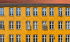 copenhagen windows (poludziber1) Tags: copenhagen denmark facade building architecture yellow city urban