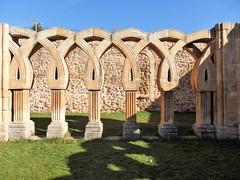 Soria - Claustro Monasterio de San Juan de Duero. (EduOrtÍn.) Tags: castillaleón soria claustro románico monasterio monasteriosanjuandeduero