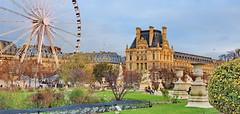 19 Paris Décembre 2019 - Jardin des Tuileries (paspog) Tags: paris france décembre december 2019 tuileries jardin parc park jardindestuileries granderoue ferriswheel louvre
