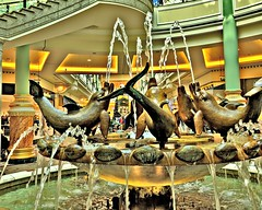 Dolphin fountain inside the Trafford Centre at Manchester (Tony Worrall) Tags: manchester greatermanchester trafford traffordcentre xmas christmas inside interior shops shopping golden units ornate intu location place visit visitors tourists buy sell sale bought item stock ilobsterit instagram made english british gmr festive nice dailyphoto photos photohour flickr dolphin wet water splash fun silly fountain gold
