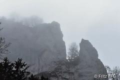 Rock in the fog (PinoyFri) Tags: felsen rock roccia 岩石 岩 록 rots roca niebla 霧 mist nebbia calígine sw bn bw donautal danubevalley nikond3400 cloudy muddy foggy neblig brumeux brumoso nebuloso baum tree árbol arbre gris grau drab tamron70300 mysticmood misty