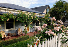 The Cottage Garden. Akaroa. (Bernard Spragg) Tags: smartphone samsungs9 cellphone garden cottage flowers landscaping akaroa house