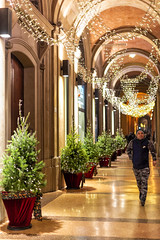 Christmas time (marco monetti) Tags: christmaslights lucidinatale streetphotography fotografiadistrada man uomo walking camminando porticoes portici decorations addobbi bologna nikonflickraward