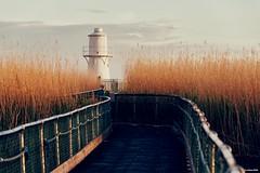 East Usk Lighthouse (technodean2000) Tags: east usk lighthouse newport south wales uk ©technodean2000 welsh nikon d810 lightroom photographer technodean2000 lr ps photoshop nik collection flick photo flickr wwwflickrcomphotostechnodean2000 www500pxcomtechnodean2000 technodean2000yahoocouk