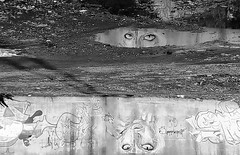 Río Verde Te Mira (Tomás Hornos) Tags: rambla arte dibujo spray mobilephotografy mobile móvil fotosconelmóvil fotografíaconmóvil smartphone monocromo monocromático monochrome blancoynegro blackandwhite blackwhite