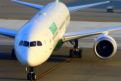 EVA Air 長榮航空 Boeing 787-10 B-17803 (Manuel Negrerie) Tags: eva air boeing 長榮航空 78710 b17803 design rollsroyce avgeeks br tpe airport sight livery evergreen planes aviation technology engines taoyuanairport canon spotting jetliner airliners asia taiwan airlines staralliance aircraft