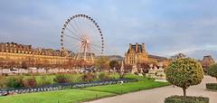 18 Paris Décembre 2019 - Jardin des Tuileries (paspog) Tags: paris france décembre december 2019 tuileries jardin parc park jardindestuileries granderoue ferriswheel louvre