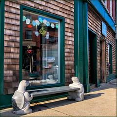 Turtles ! (Timothy Valentine) Tags: 1219 large bench reflection window 2019 monday westerly rhodeisland unitedstatesofamerica