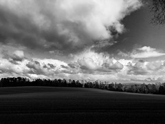 Amé a una muchacha de vidrio transparente y bestial este verano (.KiLTЯo.) Tags: kiltro cl chile puquereo landscape country clouds sky trees forest wood nature