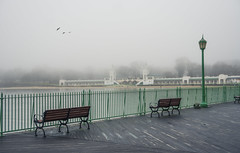 Happy Bench Monday! (JMS2) Tags: benchmonday boardwalk architecture playlandpark fence fog scenic outdoor