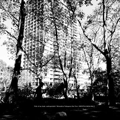 Mansion. Trees. Human. (mitsushiro-nakagawa) Tags: nakagawa artist ny interview photograph picture how take write novel display art future designfesta kawamura memorial dic museum fineart 新宿 manhattan usa london uk paris アンチノック milan italy lumix g3 fujifilm mothinlilac 川村美術館 gfx50r chiba japan exhibition flickr youpic gallery camera collage subway street publishing mitsushiro ミラノ イタリア カメラ 写真 構図 ニコン nikon coolpix クールピクス ベニス ユーロスター eurostar シャッター shutter photo 千葉 日本