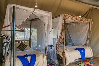 Family Wooden Accommodation (4 pax) | Africa Safari Serengeti Central