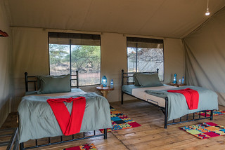Twin Accommodation | Africa Safari Serengeti Central