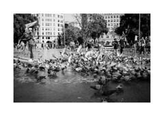 ** (Koprek) Tags: konicahexaraf film analog spain kodaktrix 400 135mm streetphotography stphotographia stphotography barcelona street