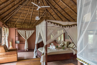 Pool Bungalow | Africa Safari Selous