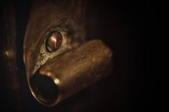 Handmade trophy. (Steve.T.) Tags: macrophotography macromonday macromondays rivet shellcase handmade emptyshellcase artilleryshell artillery raynoxdcr250 nikon d7200 closeup detail trophy lowkey lowlight