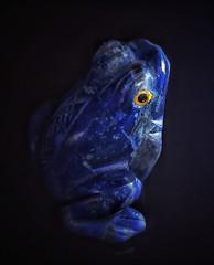 Hand made. (Marina Is) Tags: macromondays ~~hmm~~ lapislazuli azul blue frog rana